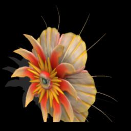 My flower creatures 500497624904_lrg